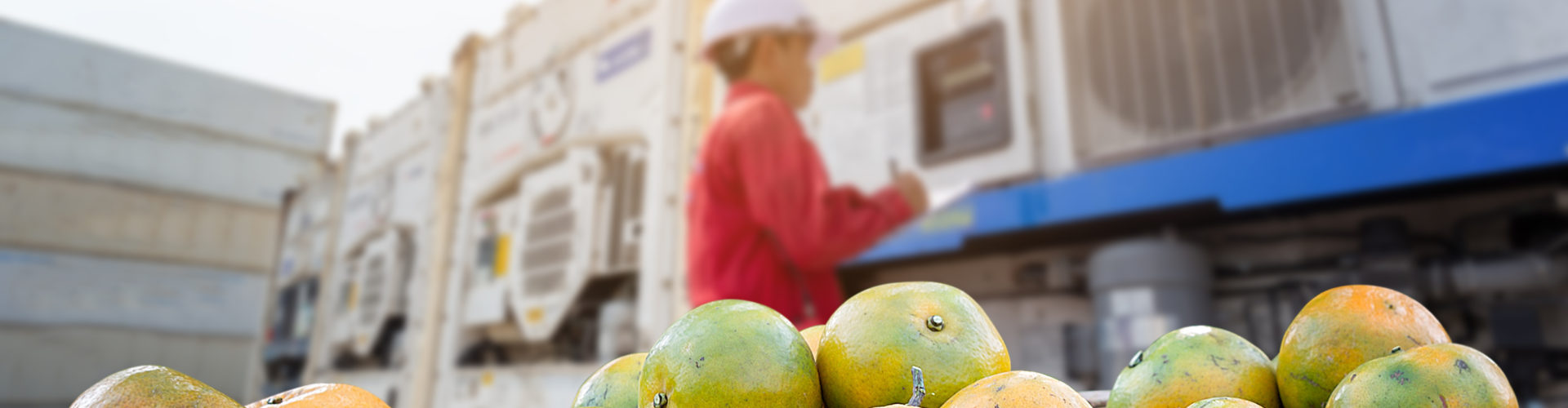 marchandises agroalimentaires